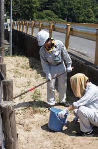 イロハーブの大掃除 | 岩国市で新築一戸建て注文住宅ならネストハウス