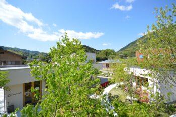 イロハーブ | 岩国市で注文住宅ならネストハウス