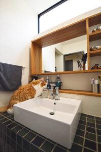 洗面化粧台 | 岩国市で一戸建てならネストハウス