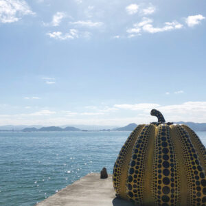 直島 | 岩国で注文住宅ならネストハウス